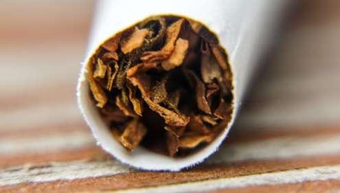 Tobacco Jobber 3